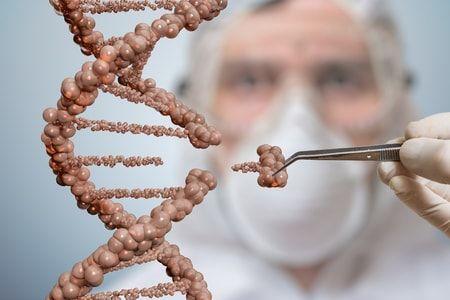 embryos genetically edited